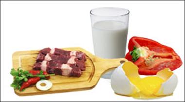 Kost & Näringslära